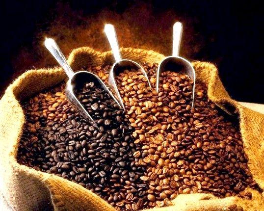 Чим відрізняється сорт кави арабіка від інших сортів