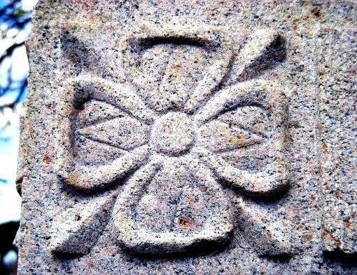 Що є символом Північної Ірландії?