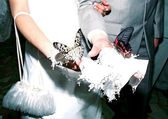 Що подарувати другу на весілля