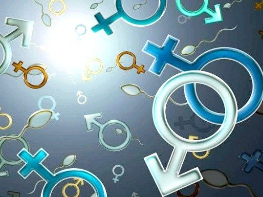 Що таке гендерний ознака