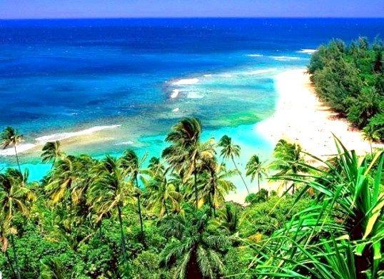 Де знаходяться гавайські острови