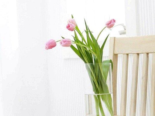 Як довше зберегти зрізані тюльпани у вазі