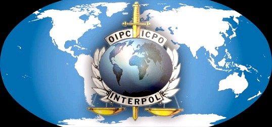 Як називається міжнародна поліція і які її функції?