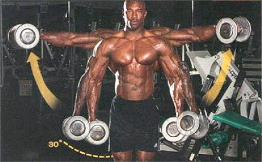 Як правильно тренувати дельтовидні м`язи