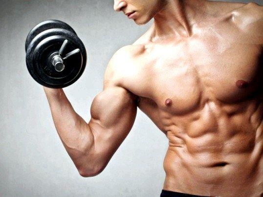 Як ростуть м'язи при силових навантаженнях