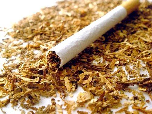 Як шкодить нікотин в сигаретах