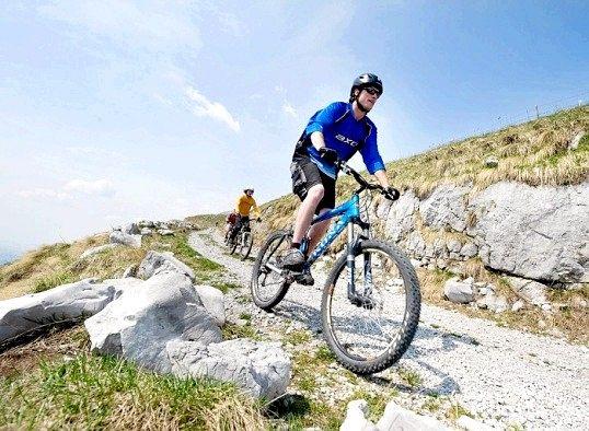 Які групи м'язів розвиває велосипед