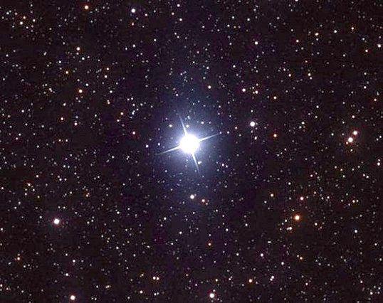 Які сузір'я носять назви птахів