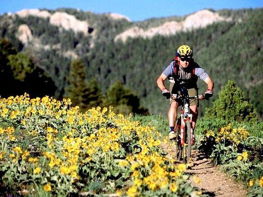 Який краще вибрати гірський велосипед