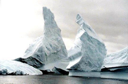 Хто відкрив Антарктиду