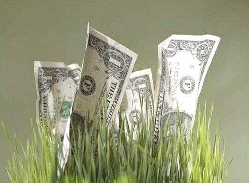 Куди вкласти гроші в Білорусії
