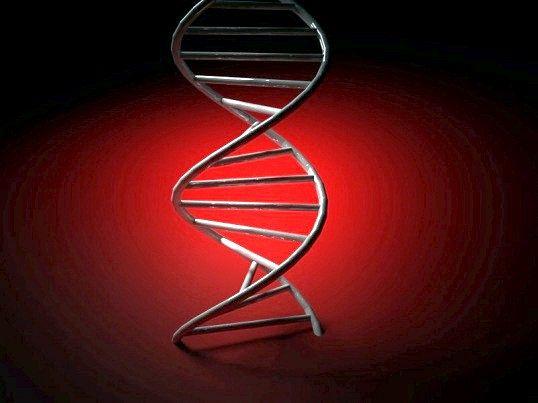 Основні біологічні відкриття 20 століття