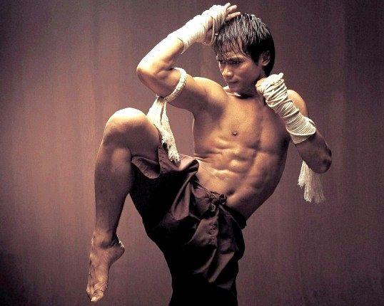 Основи тайського боксу