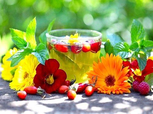 Корисні добавки до чаю