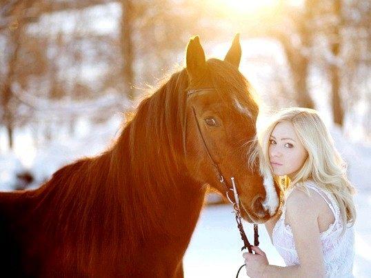 Правильна поведінка при фотографуванні з конем