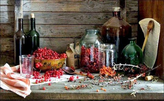 Рецепти смачних наливок