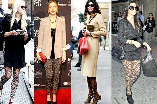 З чим носити леопардові колготи