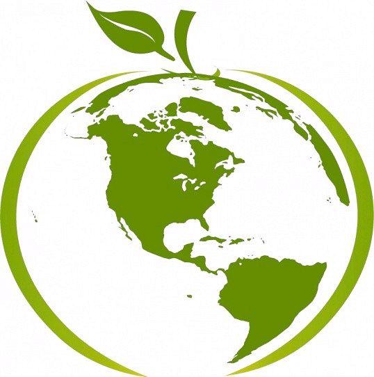 Порада 1: що вивчає екологія