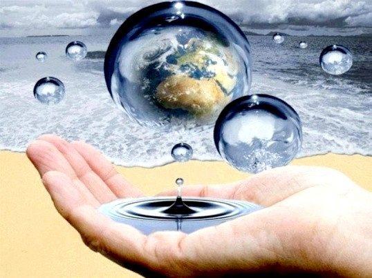 У чому полягає біологічна роль води