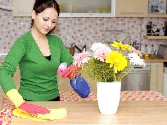 У чому полягає робота домогосподарки